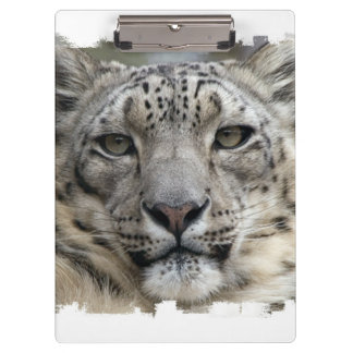 Snow Leopard Clipboards