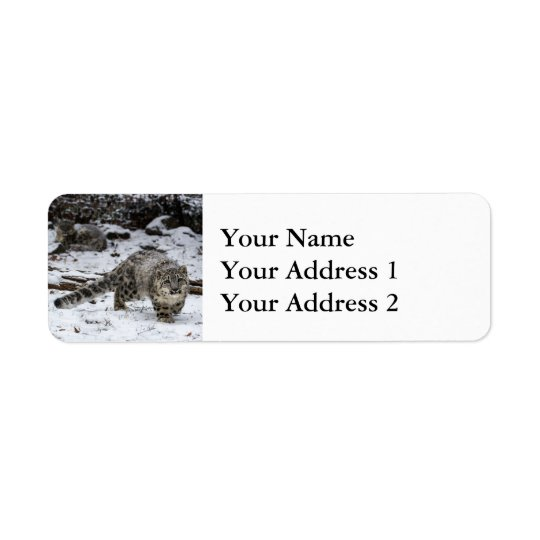 Snow Leopard Cub Return Address Label