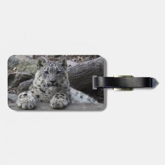 Snow Leopard Cub Sitting Luggage Tag