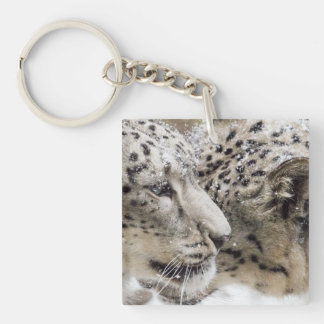 Snow Leopard Cuddle Double-Sided Square Acrylic Key Ring