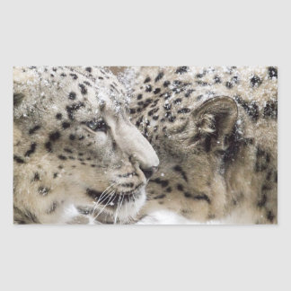 Snow Leopard Cuddle Rectangular Sticker