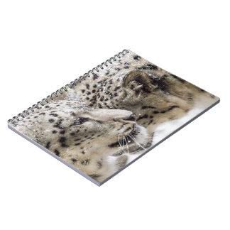 Snow Leopard Cuddle Spiral Notebooks