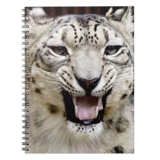 Snow Leopard Face Spiral Notebooks