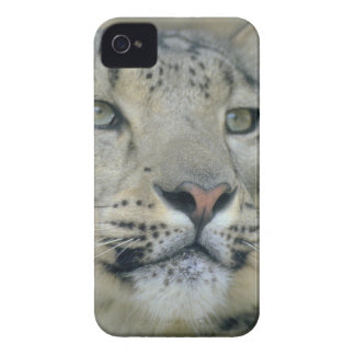 snow leopard iPhone 4 cases