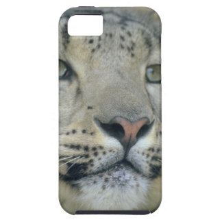 snow leopard iPhone 5 covers