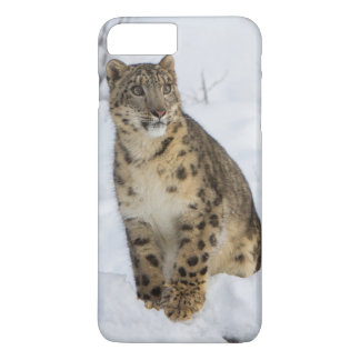 Snow Leopard iPhone 7 Plus Case