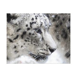 Snow Leopard Profile Portrait Canvas Print