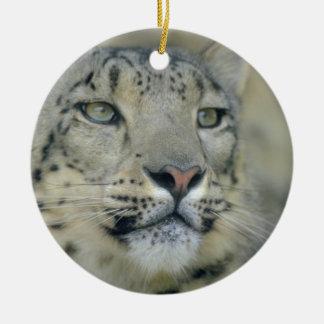 snow leopard round ceramic decoration