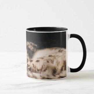 snow leopard sleeping in sun mug