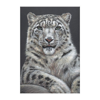 Snow leopard - Snow leopard Gallery Wrapped Canvas
