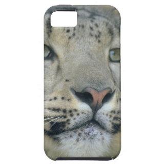 snow leopard tough iPhone 5 case