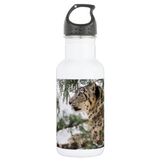 Snow Leopard under Snowy Bush 532 Ml Water Bottle