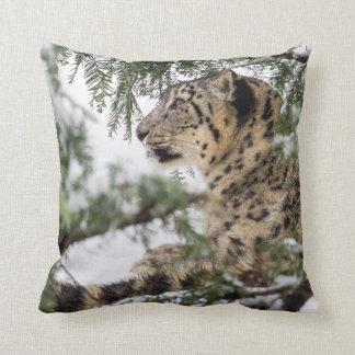 Snow Leopard under Snowy Bush Cushion