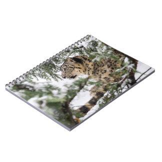 Snow Leopard Under Snowy Bush Note Books