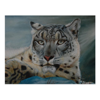 snow leopard winter postcard