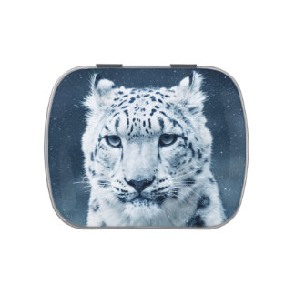 Snow Leopard Winter Snow Wildcat Nature Jelly Belly Candy Tin