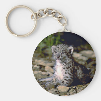 Snow leopard, young cub key ring