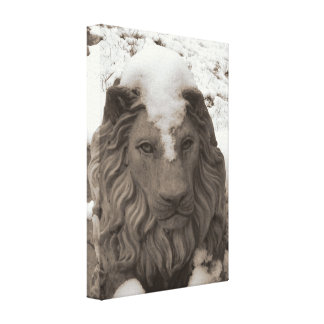Snow Loin Stretched Canvas Print