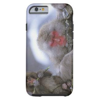 Snow Monkey Mother & Child, Jigokudani, Nagano, Tough iPhone 6 Case