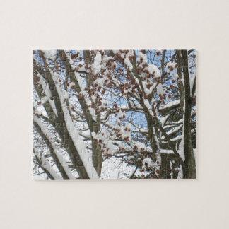 Snow on a Japanese Maple --- Jigsaw Puzzle