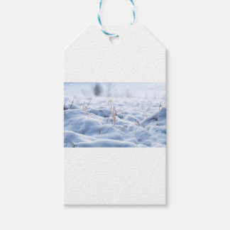 Snow on a meadow in winter macro gift tags