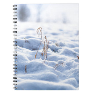 Snow on a meadow in winter macro notebook