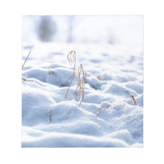 Snow on a meadow in winter macro notepad