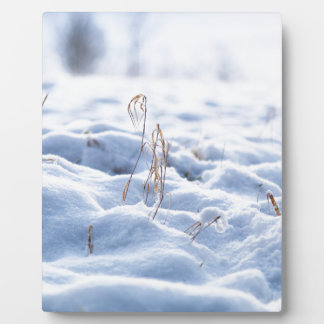 Snow on a meadow in winter macro plaque