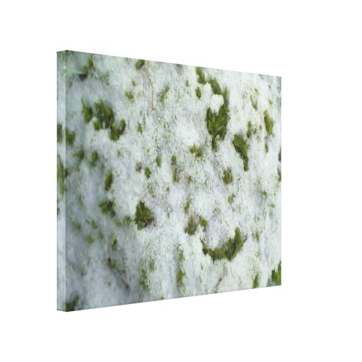 Snow on Grass Canvas Prints