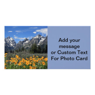 Snow on Mount Teton with Spring Yellow Flowers Personalised Photo Card
