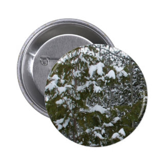 Snow on Pine Branches 6 Cm Round Badge