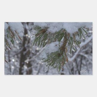 Snow on pine tree rectangular sticker