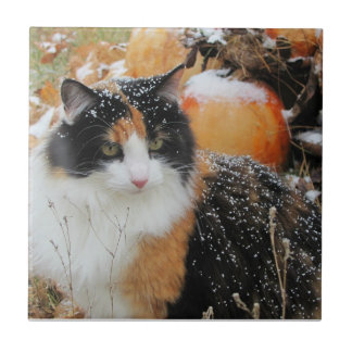 Snow on the Calico Kitty Small Square Tile