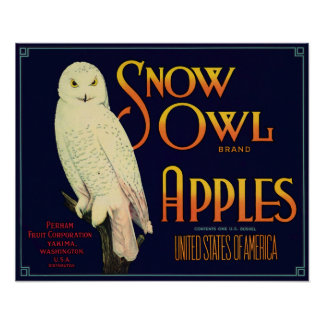 Snow Owl Brand Apples Crate Label Poster