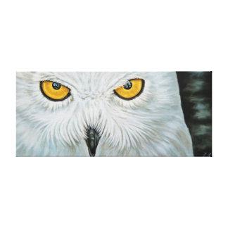Snow owl - Snow Owl Stretched Canvas Print