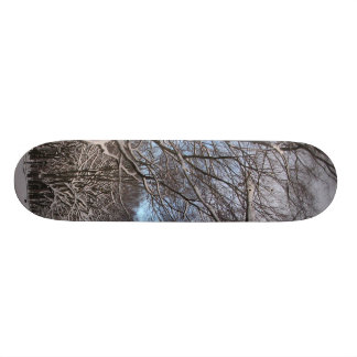 Snow Path with Trees Skate Board Deck