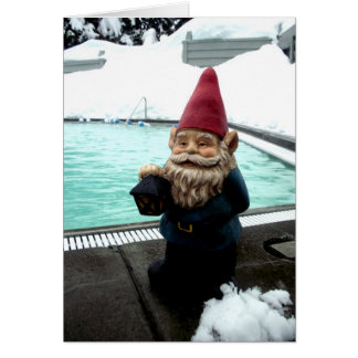Snow Pool Gnome Card