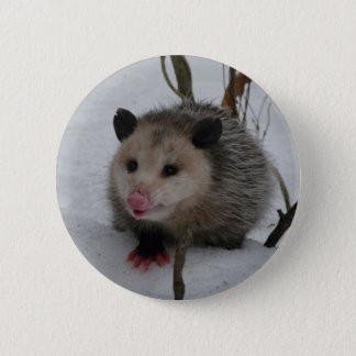 Snow Possum 6 Cm Round Badge