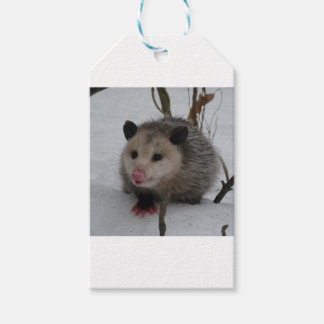 Snow Possum Gift Tags