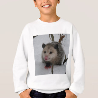 Snow Possum Sweatshirt