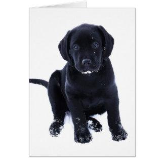 Snow Puppy - Black Labrador Card