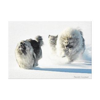 Snow Run Canvas Prints