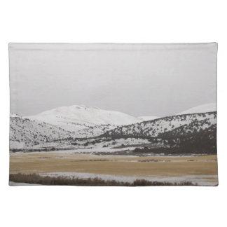 snow scene cloth place mat