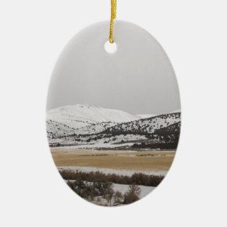 snow scene ornaments