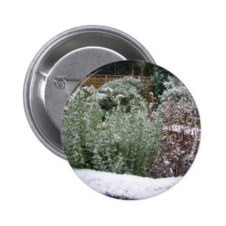 Snow Scene Pinback Buttons