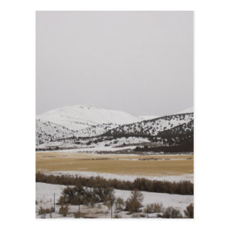 snow scene postcard