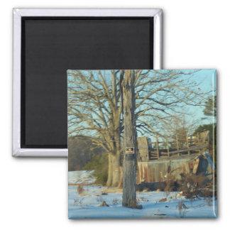 Snow Scene - Rural NC Square Magnet