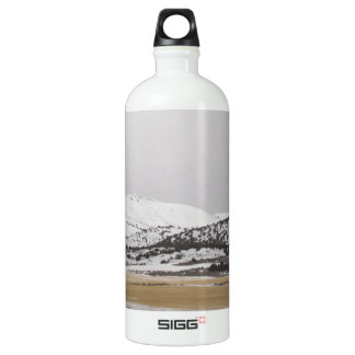 snow scene SIGG traveller 1.0L water bottle