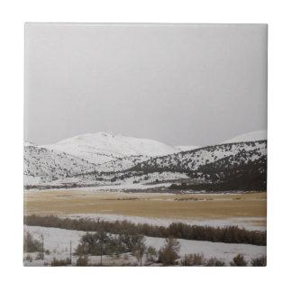 snow scene ceramic tiles