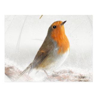 Snow Shower Robin Redbreast Postcard